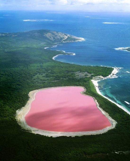 Dusty Rose Gölü