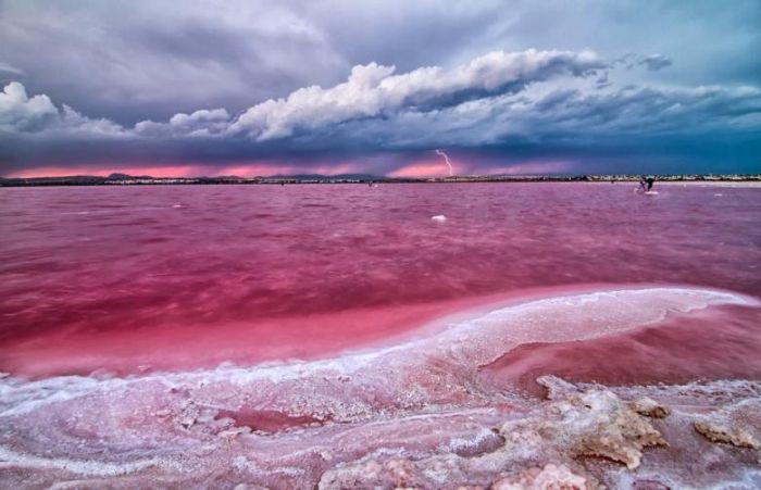 Dünyadaki Pembe Göller