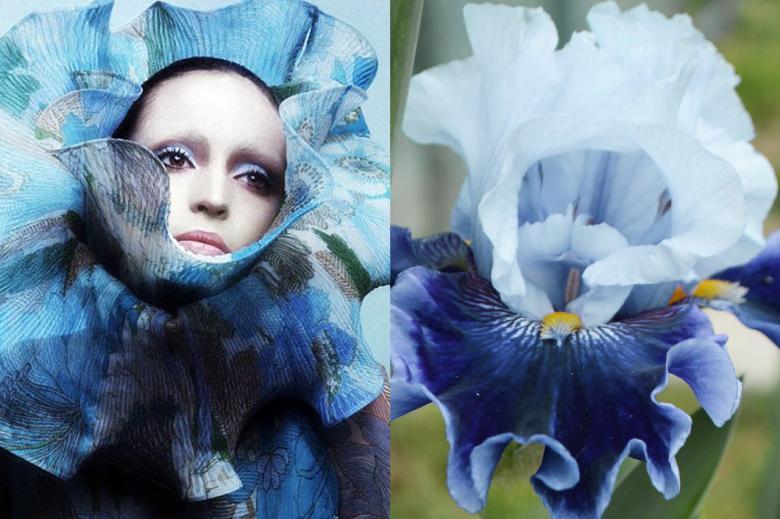 doğa ve moda