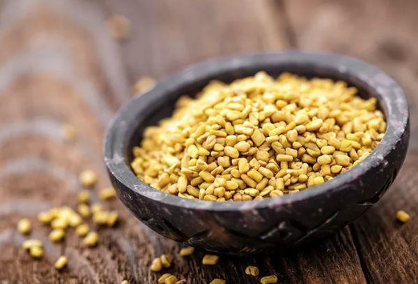 Çemen otu tohumu fenugreek seeds nasıl kullanılır